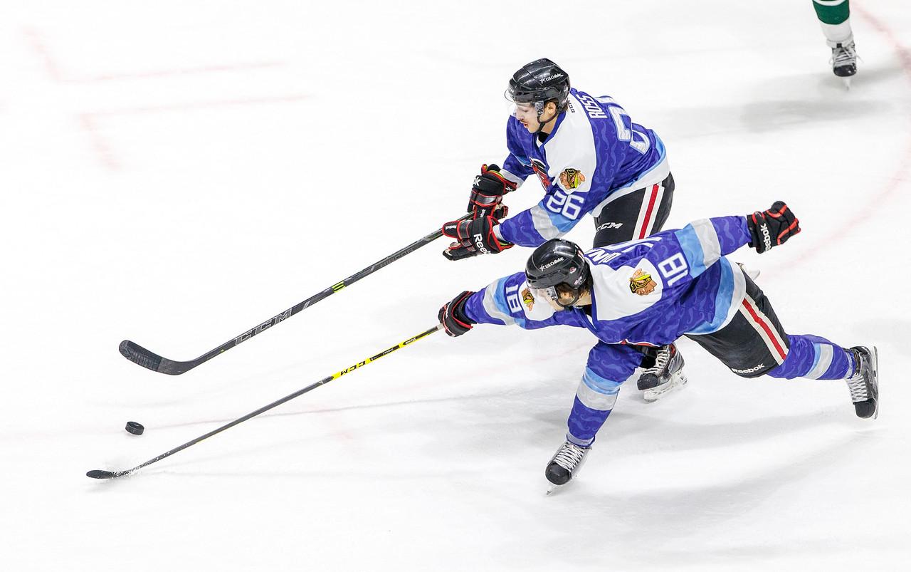 IMAGE: http://www.reicherstudios.com/Sports/HockeyPhotos/IceHogs-20142015/IceHogs-vs-Wild-11-26-14/i-QZpTsD5/0/X2/CC6Q7134-X2.jpg