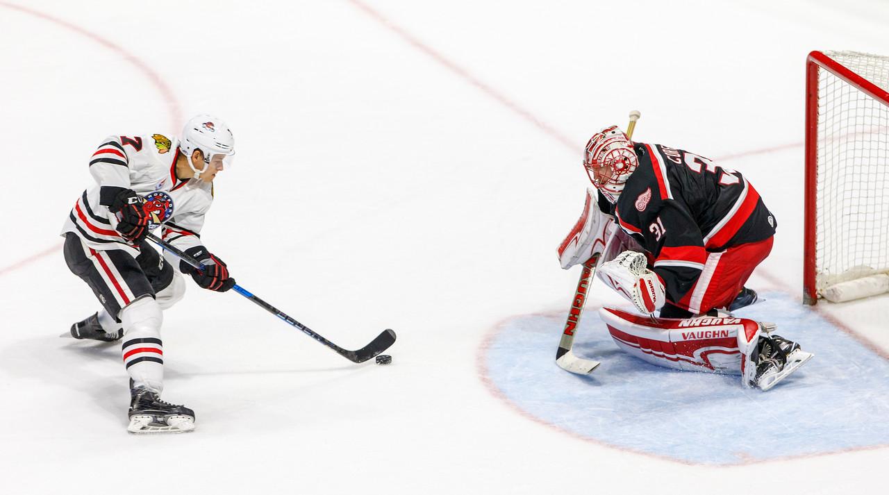IMAGE: https://photos.smugmug.com/Sports/HockeyPhotos/IceHogs-2017-2018/10-20-17-IceHogs-vs-Griffins/i-bfHGLDZ/0/d153d9ea/X2/CC6Q4735_1272-X2.jpg