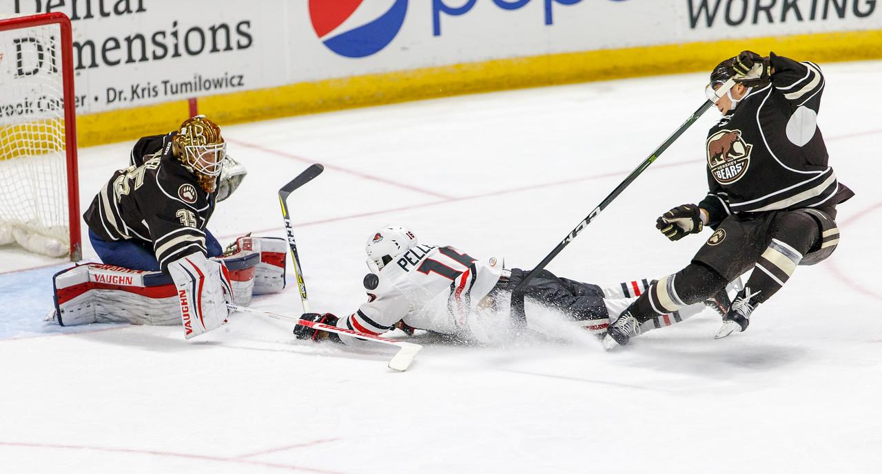 IMAGE: https://photos.smugmug.com/Sports/HockeyPhotos/IceHogs-2017-2018/10-22-17-IceHogs-vs-Hershey-Bears/i-8QXvsJX/0/4e6866b6/X2/CC6Q5009_1520-X2.jpg