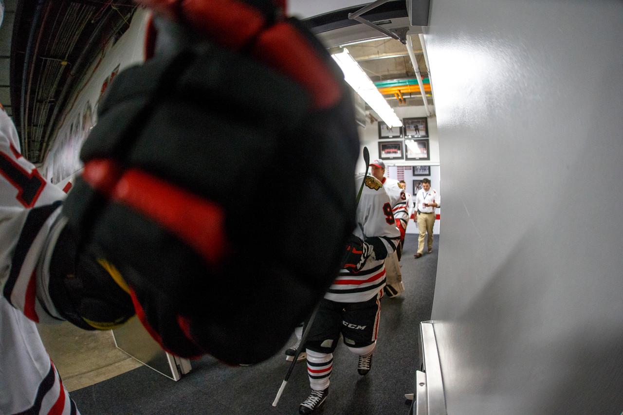 IMAGE: https://photos.smugmug.com/Sports/HockeyPhotos/IceHogs-2017-2018/10-22-17-IceHogs-vs-Hershey-Bears/i-HsLtRrV/0/f49bb9b9/X2/CC6Q4893_1410-X2.jpg
