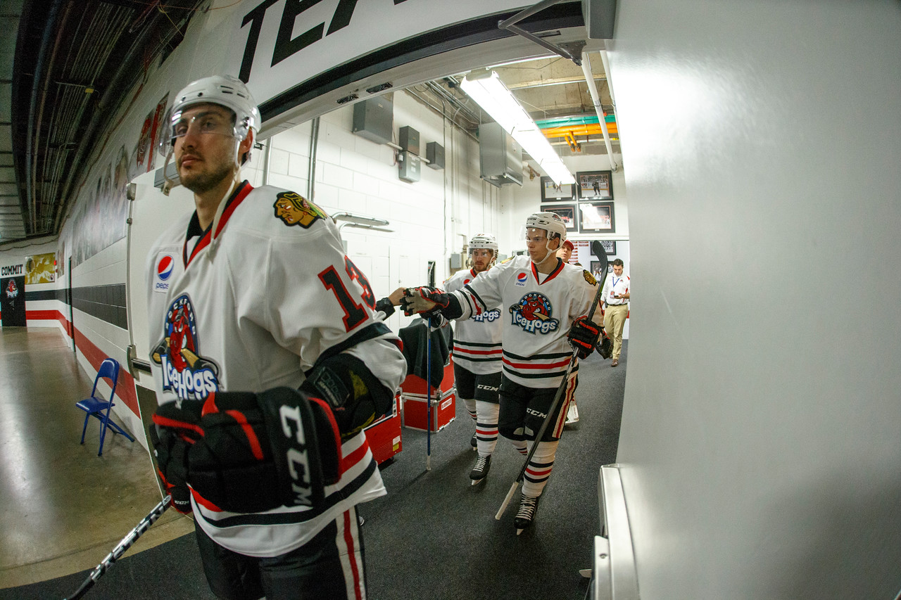 IMAGE: https://photos.smugmug.com/Sports/HockeyPhotos/IceHogs-2017-2018/10-22-17-IceHogs-vs-Hershey-Bears/i-ZC9GKsC/0/f86b8841/X2/CC6Q4892_1407-X2.jpg