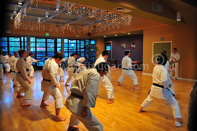 Hoitsugan Seminar III, March 12-16, 2008   For the third time, over a dozen instructors, all of whom lived and trained in Japan, will come together to teach as a collective unit. This event will involve 15 instructors teaching a total of 47 seminars over a 5-day period. Many of the instructors trained directly with Nakayama Sensei prior to his passing in 1987. Most of these instructors lived in Japan for many years and have gained experiences that may be invaluable to your own training. The Hoitsugan Seminars have set a new standard of excellence for seminars. Silicon Valley, Northern California, USA