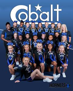 Cobalt Team