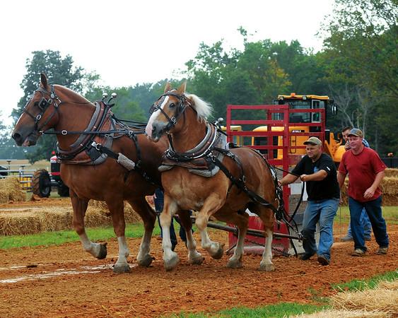 Horse Pull Bowles Farm 2010