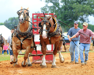 July 10th,  From Bowles Farm in Clements, MD.  These horses can really keep a sled full of weight moving.  It was a little tough shooting with the clouds breaking, then turning to rain.