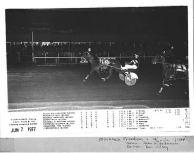 Horse Race Photos