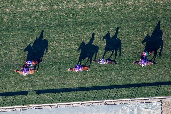 2013 Breeders Cup at Santa Anita Race Track