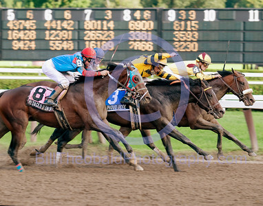 Medaglio d'Onore, Proud Jefe and Reynaldothewizard (#4) compete for third in the 2008 rendition of the Saratoga Special at Saratoga Race Course.  Medaglio d'Onore is from the first crop of Medaglia d'Oro.