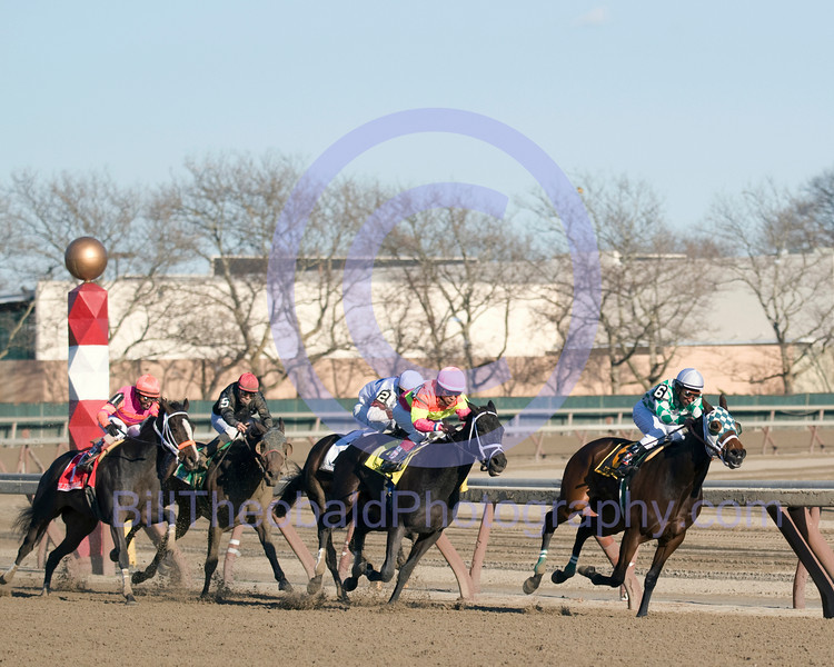 The field for the 88th Demioselle Stakes passes the quater pole at Aqueduct and enters the stretch of Aqueduct.  The field is led by Oh Diane closely followed by Tizahit, Fuzzy Britches, Protesting, and In the Rough.