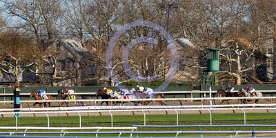 The field for the 88th running of the Gazelle enters the far turn at Aqueduct on November 28.  The field in order Falshing, Unrivaled Belle, Bon Jovi Girl, Me Love, Milwaukee Appeal, Stardom Bound, Peach Brew and Multipass.