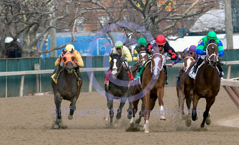 The field turns for home in the 2008 version of the demoislle Stakes at Aqueduct Race Track.  The eventual winner is Spring Side (#4 with the orange blinkers - far left)in the midst of her 5 wide move on the trun which would properl her to victory ahead of Sky Diva (#5) and (#2 Ain't Love Grand)