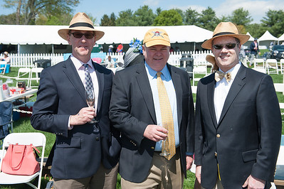 Virginia Gold Cup -- 2014