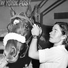 Mrs. Ray Francis with Ransonette Horse At The National Horse Show At Madison Square Garden. 1951.