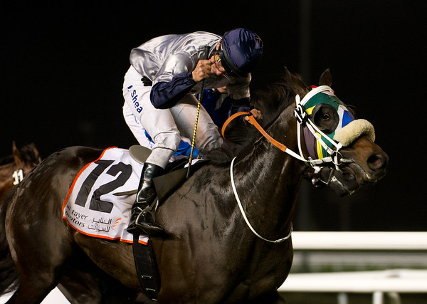 Viscount Nelson ridden by Tadhg O'Shea wins Race 5, 1600m turf, held at Meydan Racecourse on 16th February, 2012. Photo by: Stephen Hindley/SPORTDXB ©