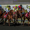 "The Al Maktoum Challenge of Purebred Arabians at The Tenth Carnival Race Meeting - ""Super Saturday"" held at Meydan, Dubai on March 9th, 2012. Photo by: Stephen Hindley ©"