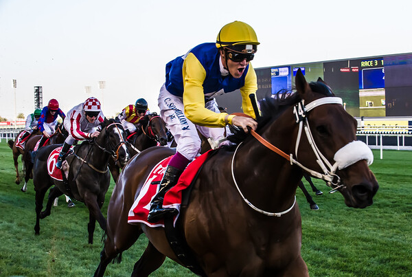 """Christophe Soumillon on Shea Shea celebrates as he crosses the line to win The Meydan Sprint, 1000m turf at The Tenth Carnival Race Meeting - """"Super Saturday"""" held at Meydan, Dubai on March 9th, 2012. Photo by: Stephen Hindley ©"""