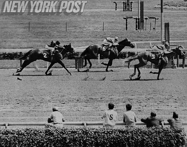 "Johnny Rotz riding ""Our Effie"" pulls out a win at the Aqueduct Racetrack. 1968"