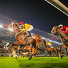 Dubai World Cup Carnival 2014