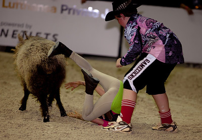 Hayley Antonelli goes Mutton Bustin'