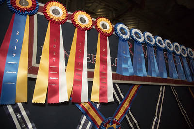 Scott Stewart, Washington International Horse Show