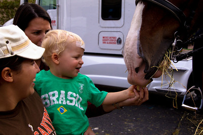 Delan Musselman (22 months) and her nanny Sylmara Silva feed police horse Sampson
