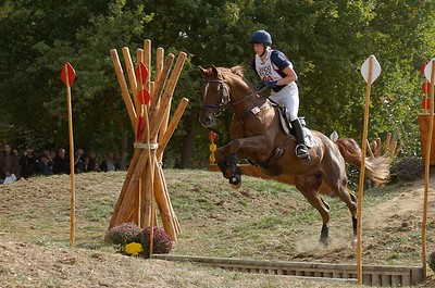 Mondial du Lion C07-24 Sandra Auffarth (ger)-Opgun Louvo