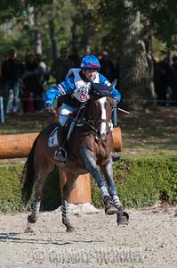 30 Arthur Bonneau - Quasar du Saillan