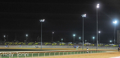 Horses warm up on the track before the running of the 5th Charles Town Classic