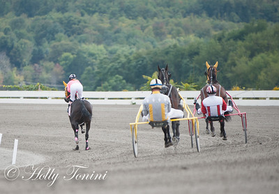 During the record attemt, Chantel Sutherland and DW's NY Yank were followed by two proctors driven by Dave Palone (right) and Ron Burke