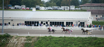 The Meadows backside is packed as Sutherland passes by for the first time around the track