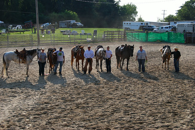 2014 - Duane Valerio's Horsemanship in the Cow Pen Clinic