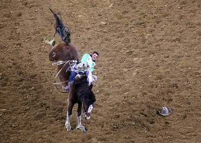 Vertical horse