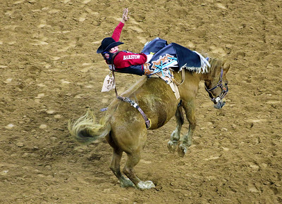 Notice that the broncs are not shod.