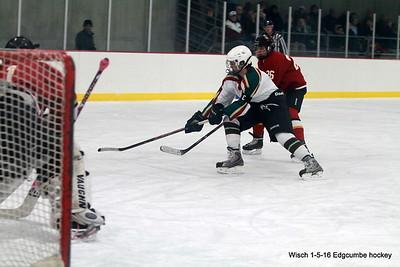 Edgcumbe Bantam Hockey Jan 5th 2016