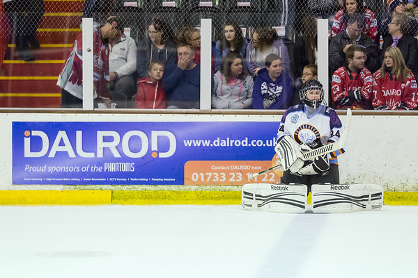 Phantoms v Sheffield Steeldogs 14/9/14