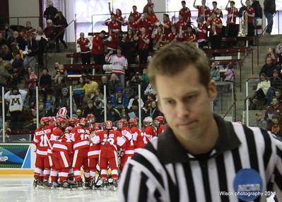 BU vs MN Womens Hockey NCAA March 2014