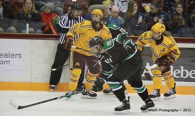 Gopher Women Hockey Nov 17th 2013
