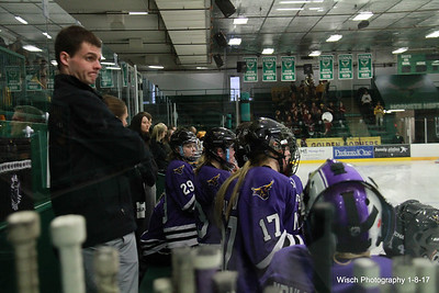 U of MN vs Minnesota State Womens Hockey  HOF game Jan 2017