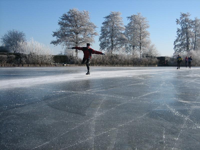 the figure skater Henk (Reewijkse plassen)