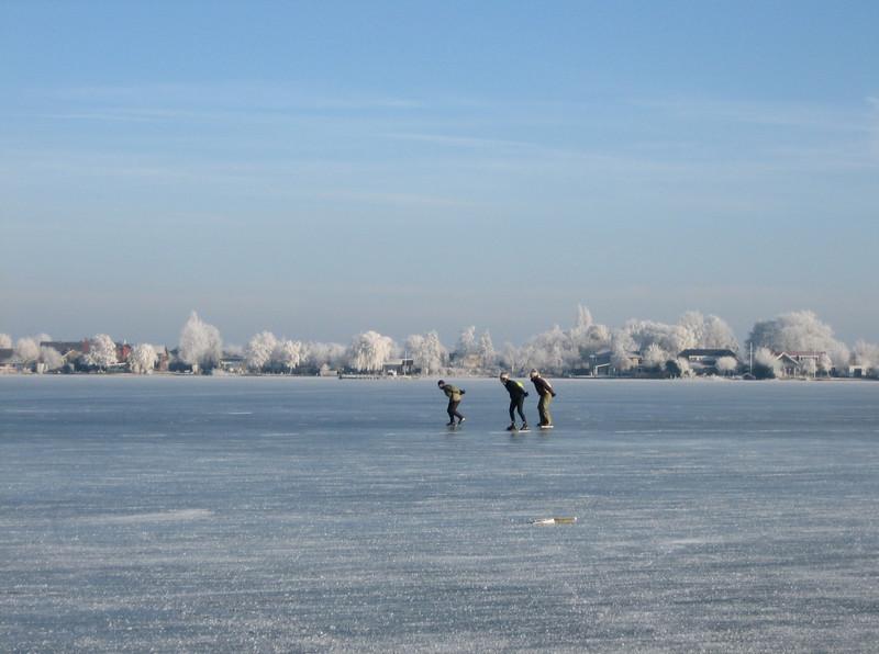 let's go skating (Reewijkse plassen, South Holland 2009)