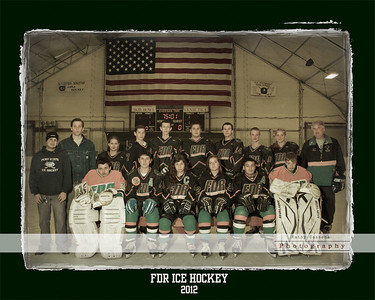 FDR hockey collage rev