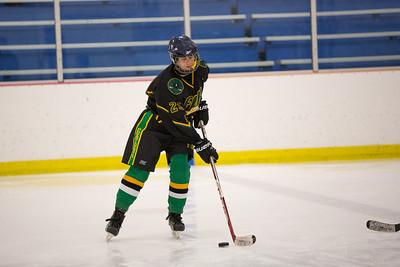 FDR JV Ice Hockey Game-1289