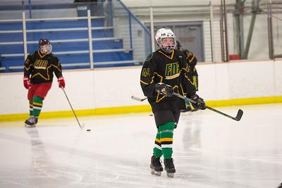 FDR JV Ice Hockey Game-1255