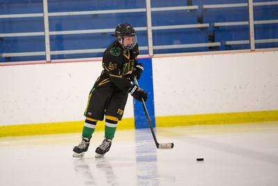 FDR JV Ice Hockey Game-1259