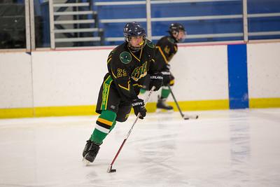 FDR JV Ice Hockey Game-1295