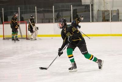 FDR JV Ice Hockey Game-1279