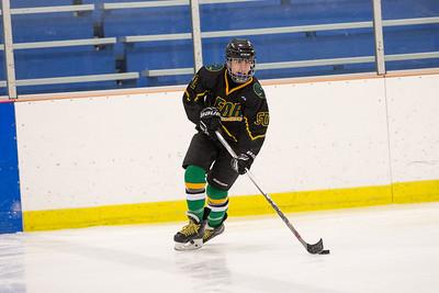 FDR JV Ice Hockey Game-1284