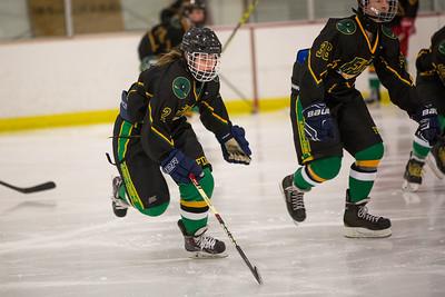 FDR JV Ice Hockey Game-1265