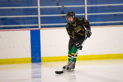 FDR JV Ice Hockey Game-1250
