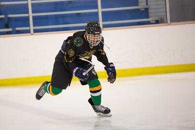 FDR JV Ice Hockey Game-1262